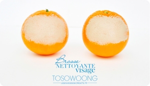 tosowoong3