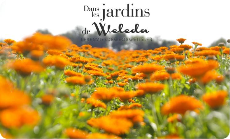 WELEDAjardins9h
