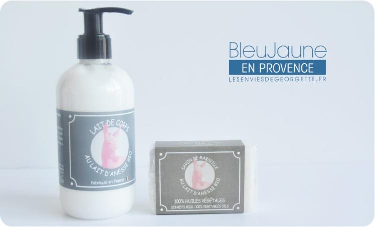 bleujaune2