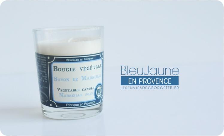 bleujaune6