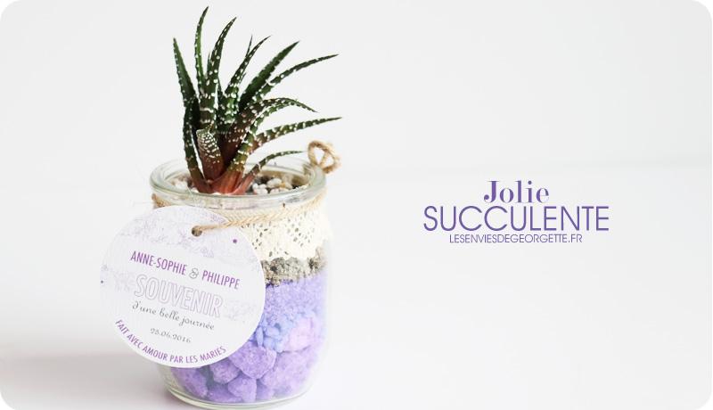 succulentes4
